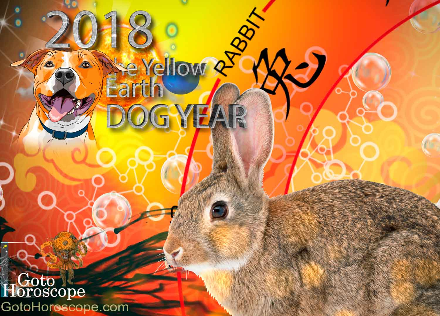Rabbit 2018 Horoscope for the Yellow Earth Dog Year