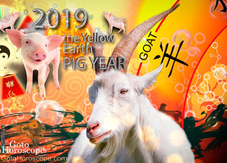 Horoscope for 2019 year Goat (Sheep) 6