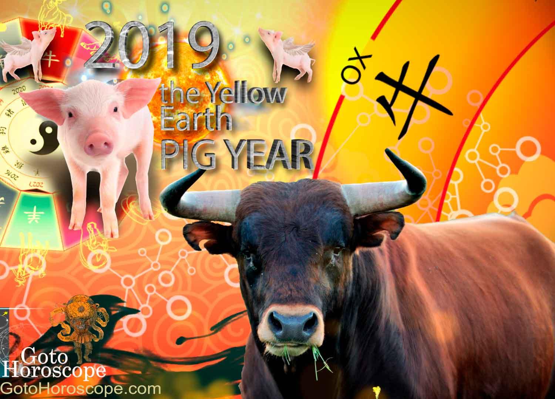 Eastern Horoscope for the Bull for 2019 87