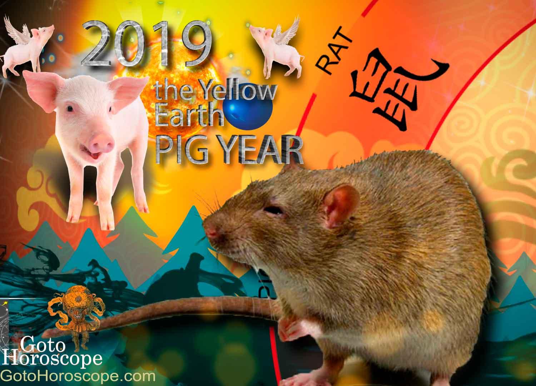 Horoscope for the Rat for 2019 96