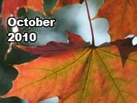 October 2010 monthly horoscope