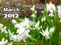 March 2012 monthly horoscope