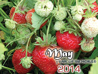 May 2014 monthly horoscope