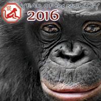 Chinese New Year 2016 horoscope