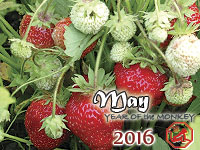 May 2016 monthly horoscope