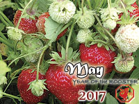 May 2017 monthly horoscope