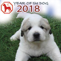 2018 horoscope for the year of the Dog