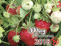 May 2018 monthly horoscope