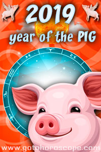 2019 horoscope for the year of the Pig