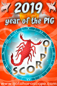 2019 horoscope scorpio