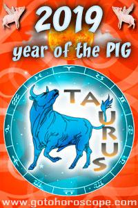 2019 horoscope taurus