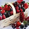 Dream Berries