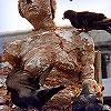 Dream Bird Poop