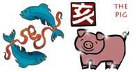 Pisces - Pig