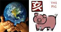 Kuei Hai  or Earth Pig Chinese year