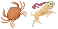 Cancer and Aries Zodiac signs compatibility