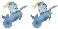Capricorn and Capricorn Zodiac signs compatibility