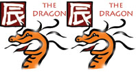Dragon and Dragon compatibility horoscope