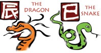 Dragon and Snake compatibility horoscope
