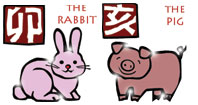 Rabbit and Pig compatibility horoscope