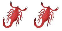 Scorpio and Scorpio Zodiac signs compatibility