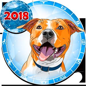 2018 Video Horoscope for 12 Zodiac Sign