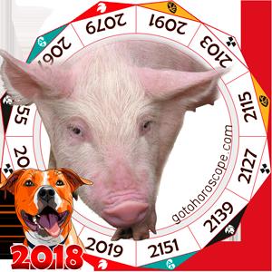 Oriental 2018 Horoscope for Pig
