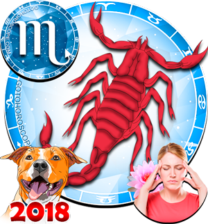 2018 Health Horoscope Scorpio for the Dog Year