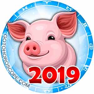 2019 Horoscope for 12 Zodiac Sign