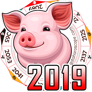 Chinese 2019 Horoscope for all Zodiac, Chinese 2019 New Year of Pig