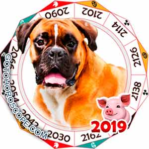 Oriental 2019 Horoscope for Dog