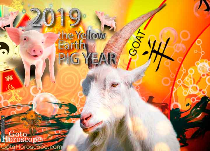 Sheep 2019 Horoscope for the Yellow Earth Pig Year