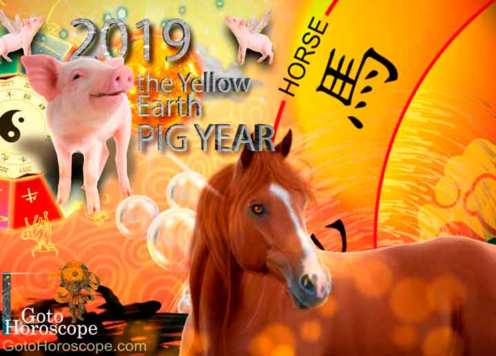 Horse 2019 Horoscope for the Yellow Earth Pig Year