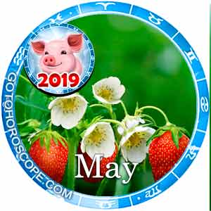 May 2019 Horoscope, Monthly Horoscopes for May 2019 year of the Pig