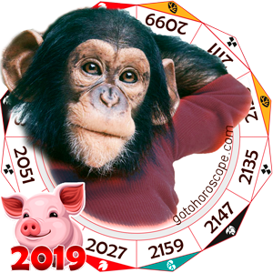 Monkey 2019 Horoscope