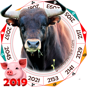Ox 2019 Horoscope