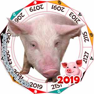 Oriental 2019 Horoscope for Pig