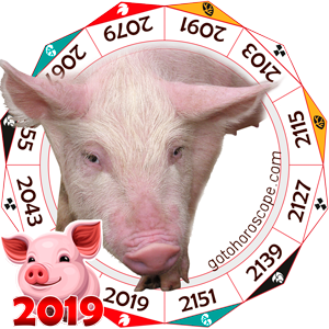 Pig 2019 Horoscope