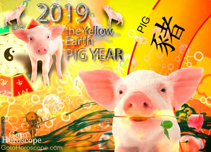 Pig 2019 Horoscope for the Yellow Earth Pig Year