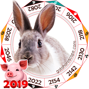 Rabbit 2019 Horoscope