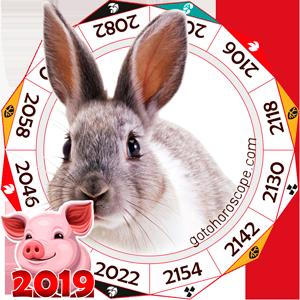 Rabbit 2019 Horoscope