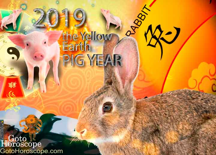 Rabbit 2019 Horoscope for the Yellow Earth Pig Year
