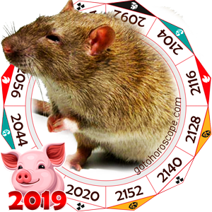 Rat 2019 Horoscope