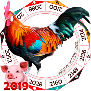 Rooster 2019 Horoscope