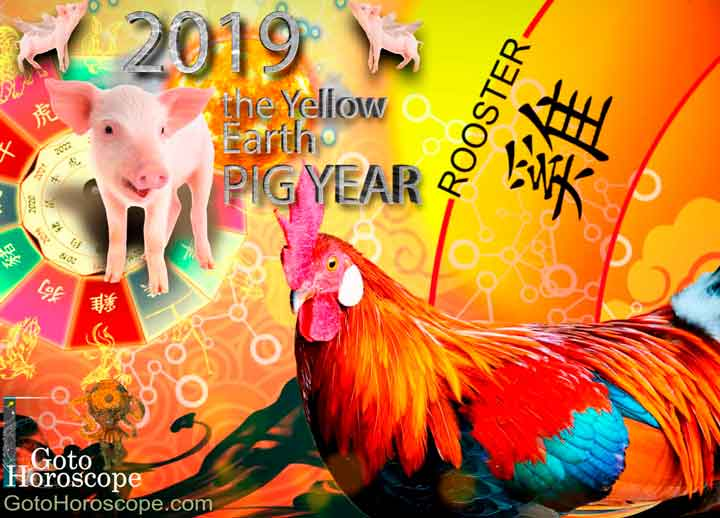 Rooster 2019 Horoscope for the Yellow Earth Pig Year
