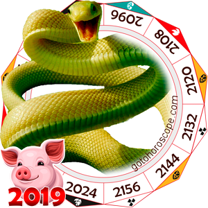 Snake 2019 Horoscope