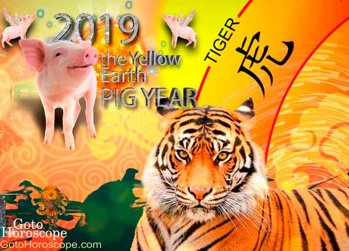 Tiger 2019 Horoscope for the Yellow Earth Pig Year