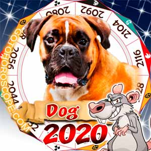 2020 Horoscope for Dog Zodiac Sign