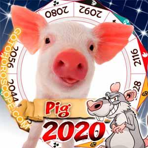 2020 Horoscope for Pig