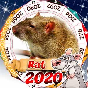 2020 Horoscope for Rat